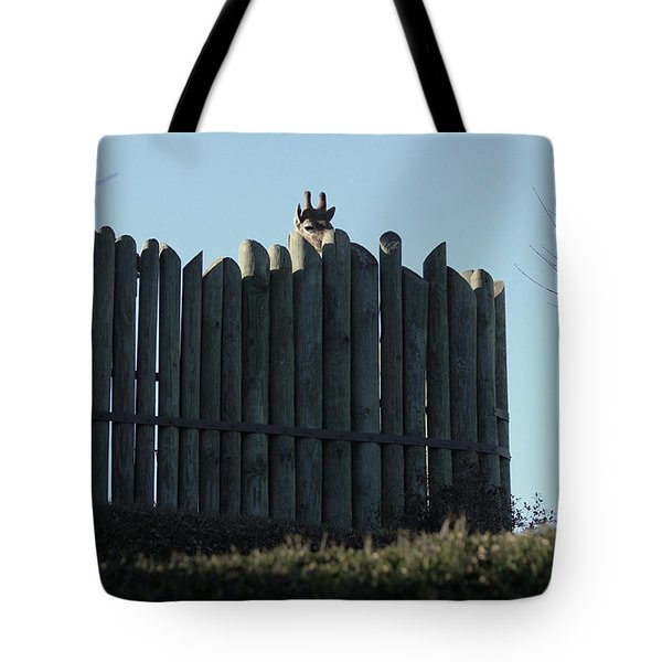 Tote Bag featuring the photograph Watching by Kim Henderson
