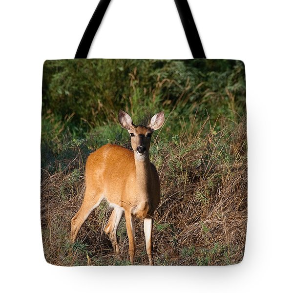 Tote Bag featuring the photograph Watching Me Closely by Monte Stevens