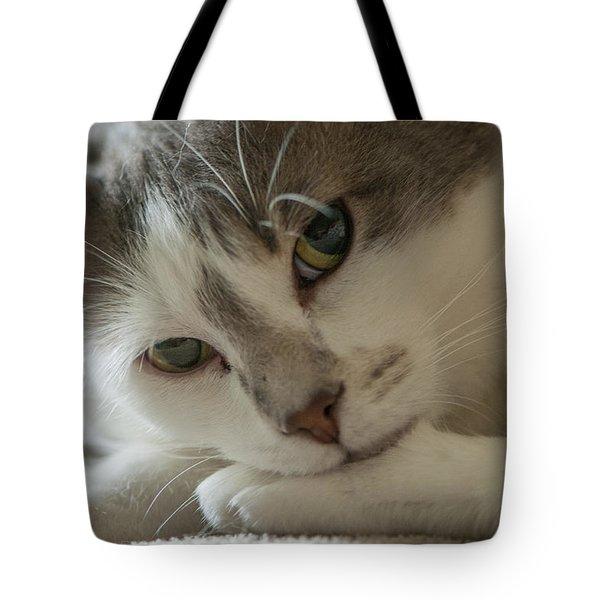 Watching Me, Watching You Tote Bag