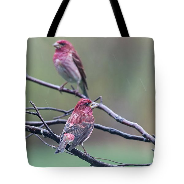 Tote Bag featuring the photograph Watching Over You by Susan Capuano