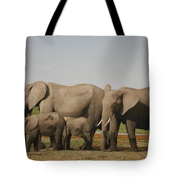 Tote Bag featuring the photograph Watching The Children by Gary Hall