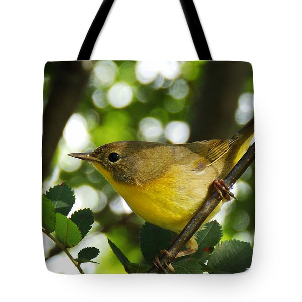 Watching The Season Change Tote Bag