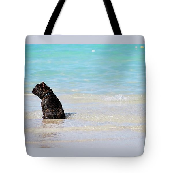 Tote Bag featuring the photograph Watching The Waves by Amee Cave