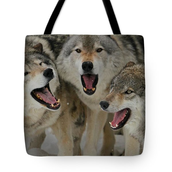 Watching Youtube Tote Bag by Heather King