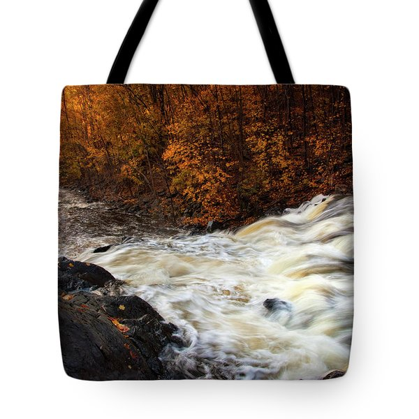 Water Dances Tote Bag by Neil Shapiro