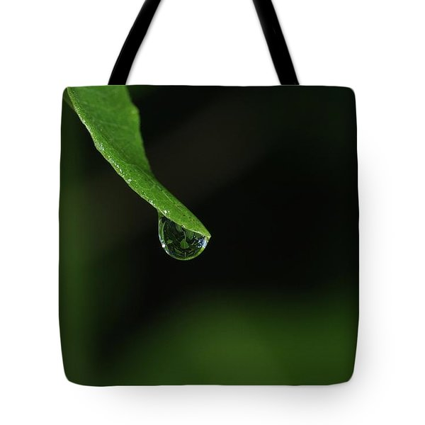 Tote Bag featuring the photograph Water Drop by Richard Rizzo