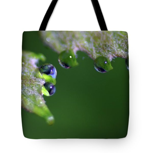 Tote Bag featuring the photograph Water Droplet IIi by Richard Rizzo