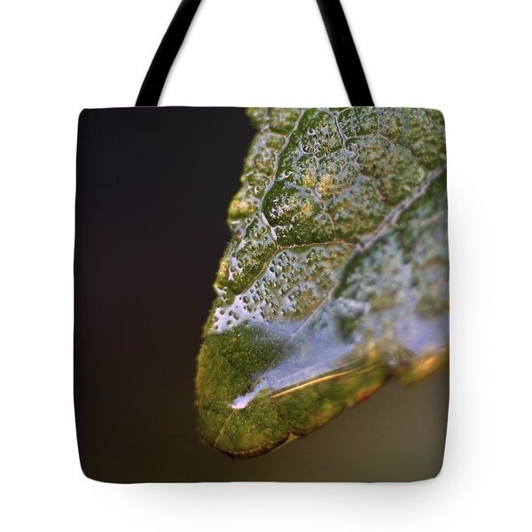 Tote Bag featuring the photograph Water Droplet V by Richard Rizzo