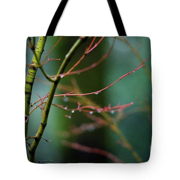 Water Droplets On Twigs II Tote Bag