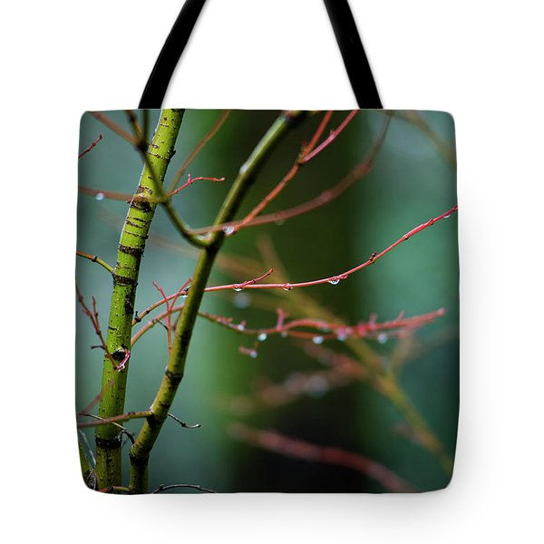 Tote Bag featuring the photograph Water Droplets On Twigs II by Charmian Vistaunet