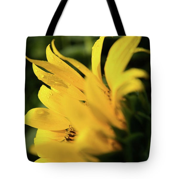Water Drops And Sunflower Petals Tote Bag