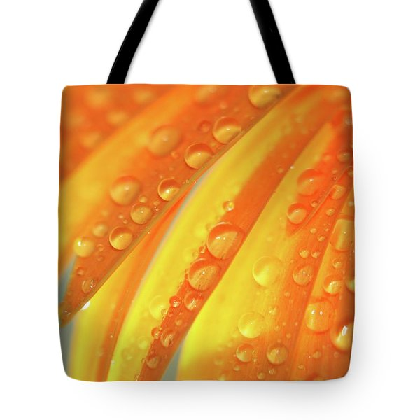 Water Drops On Daisy Petals Tote Bag by Daphne Sampson