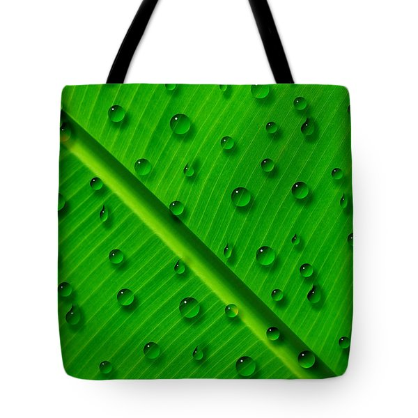 Tote Bag featuring the painting Water Drops On Palm Leaf by Georgeta Blanaru