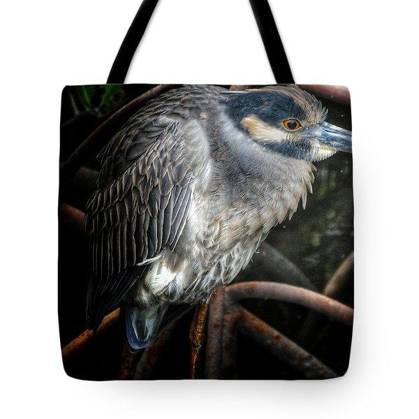Water Fowl Iv Tote Bag