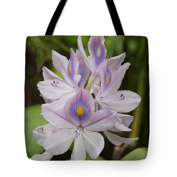 Water Hyacinth Tote Bag by Wendy Coulson