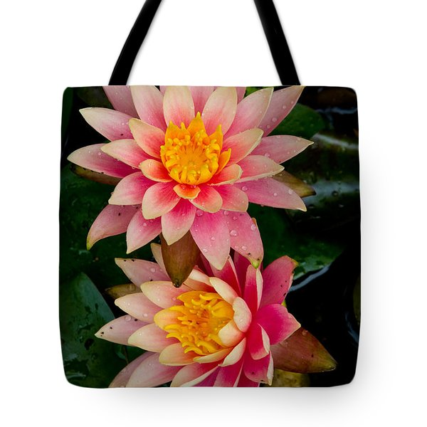 Water Lilies Tote Bag by Brent L Ander