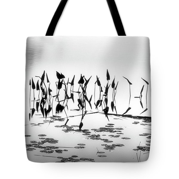 Water Lilies Tote Bag by Catherine Alfidi