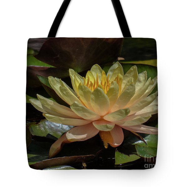 Water Lilly 1 Tote Bag