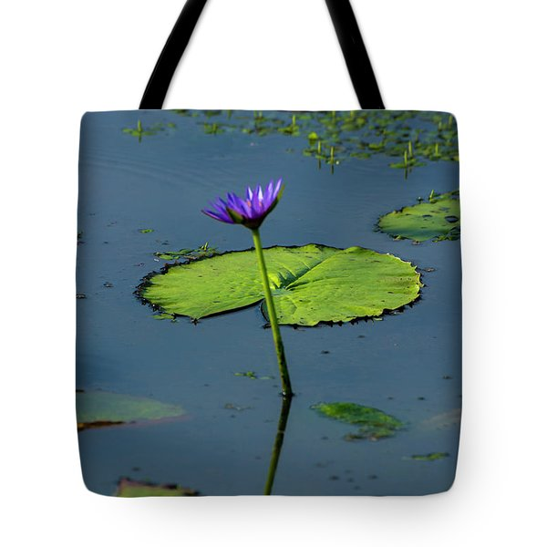 Tote Bag featuring the photograph Water Lily 2 by Buddy Scott