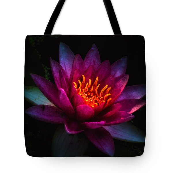 Water Lily 2 Tote Bag