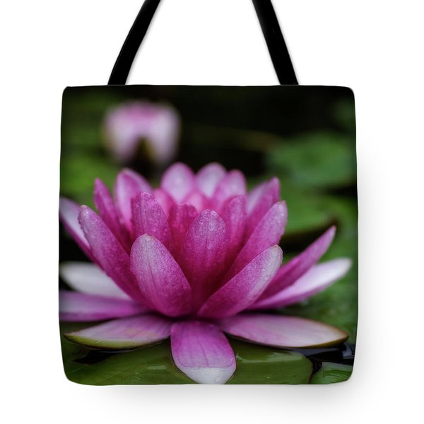Water Lily After Rain Tote Bag