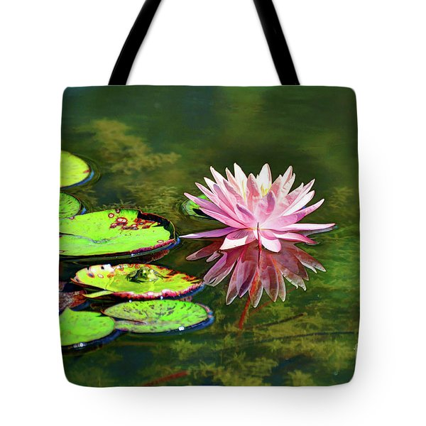 Water Lily And Frog Tote Bag by Savannah Gibbs