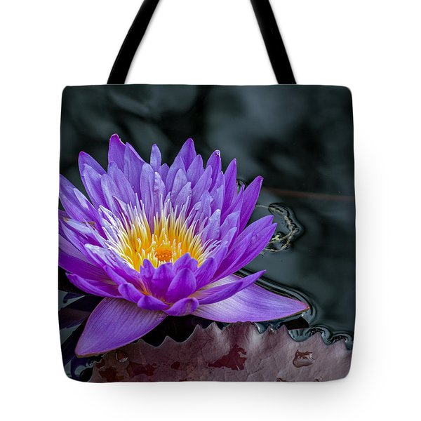 Tote Bag featuring the photograph Water Lily Blue by Phil Abrams