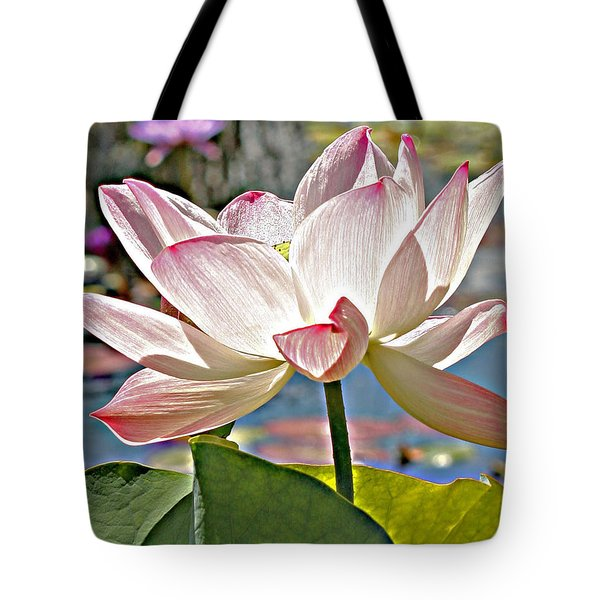 Water Lily Tote Bag by Catherine Alfidi