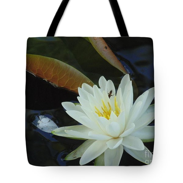 Water Lily Tote Bag by Daun Soden-Greene