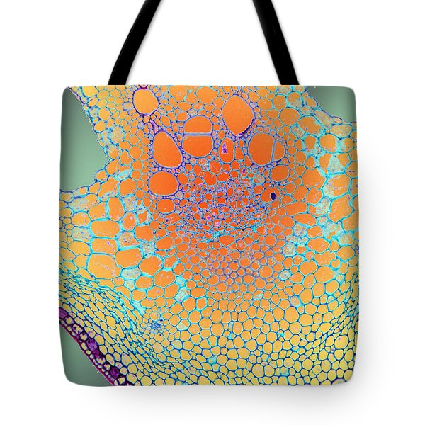 Water Lily Homage Tote Bag
