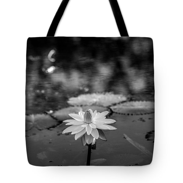 Water Lily In Black And White 1.2 Tote Bag