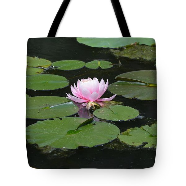 Water Lily In Pink Tote Bag