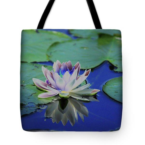 Water Lily  Tote Bag by Karol Livote
