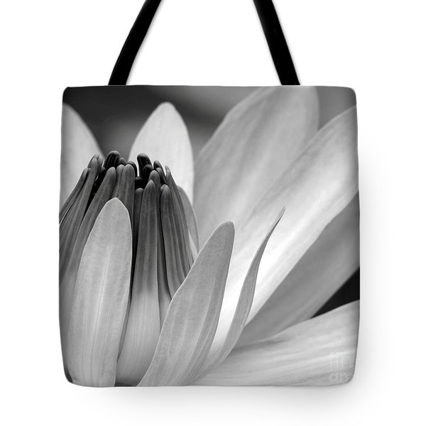 Water Lily Opening Tote Bag