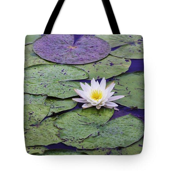 Water Lily Panorama Tote Bag