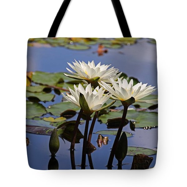 Water Lily Reflections Tote Bag
