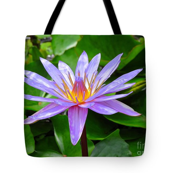 Water Lily Tote Bag by Suzanne Handel