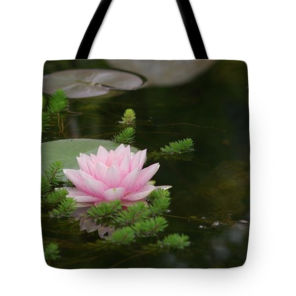 Water Lily Tote Bag by Victor K