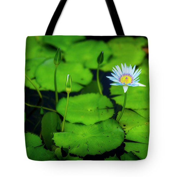 Tote Bag featuring the photograph Water Logged by Ryan Manuel