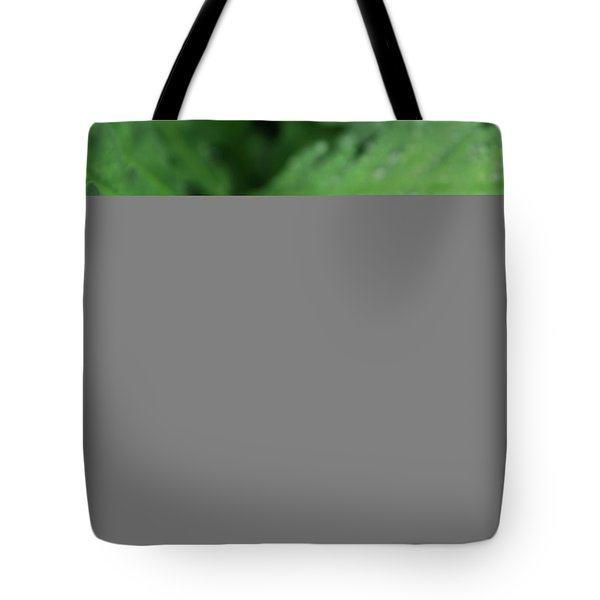 Water On The Fronds Tote Bag