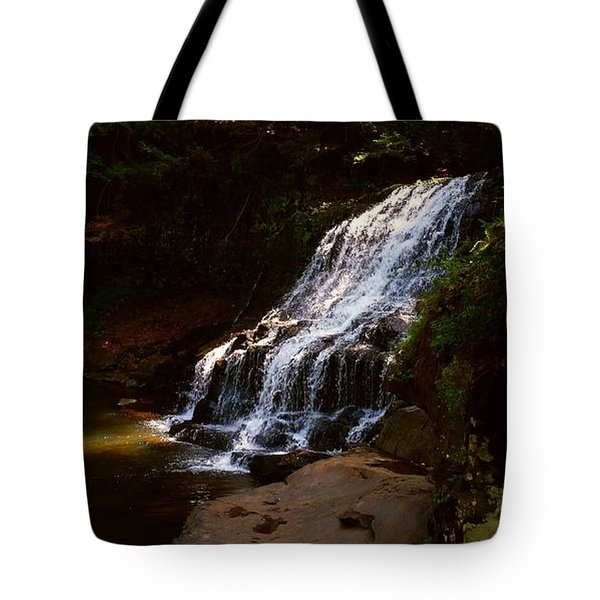 Tote Bag featuring the photograph Water Path by Raymond Earley