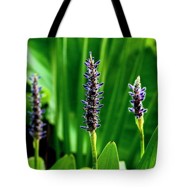 Tote Bag featuring the photograph Water Plants 2017 1 by Buddy Scott