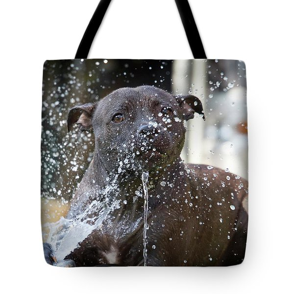 Water Play Bullterrier Pup Tote Bag