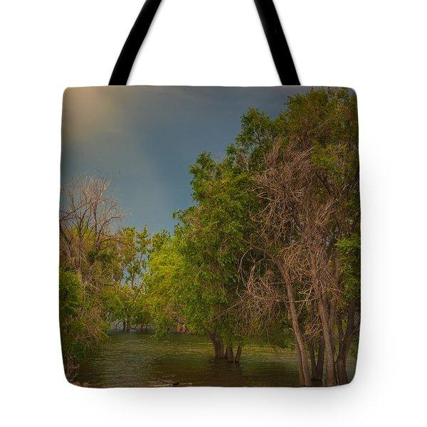 Water Refuge Tote Bag