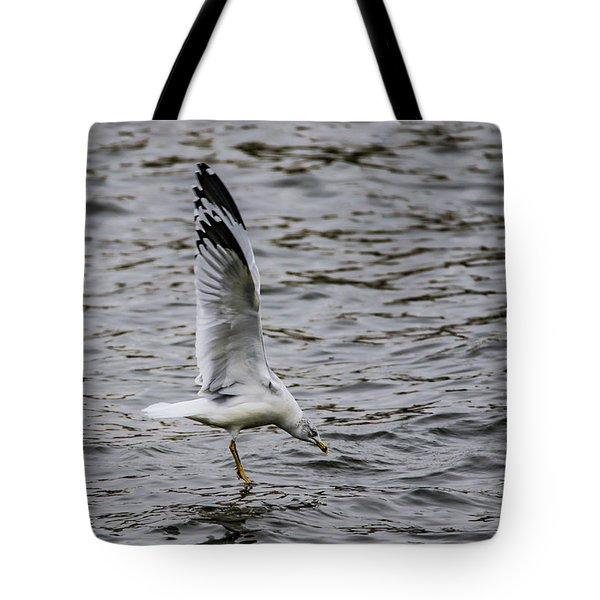Water Tester Tote Bag