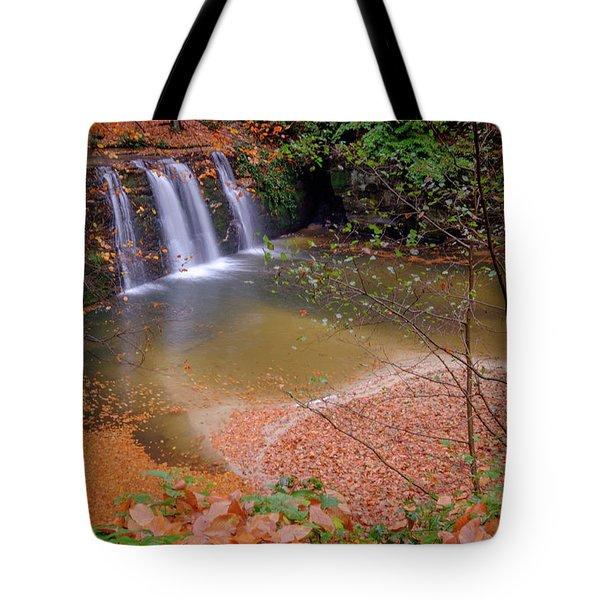 Waterfall-1 Tote Bag