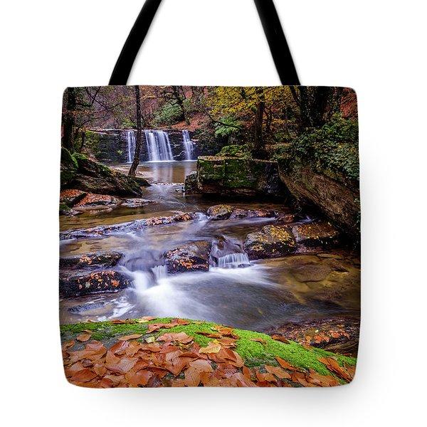 Waterfall-2 Tote Bag