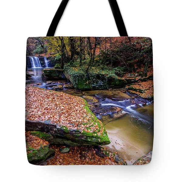 Waterfall-3 Tote Bag