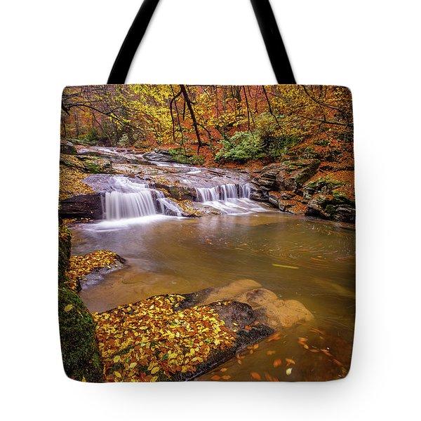 Waterfall-6 Tote Bag