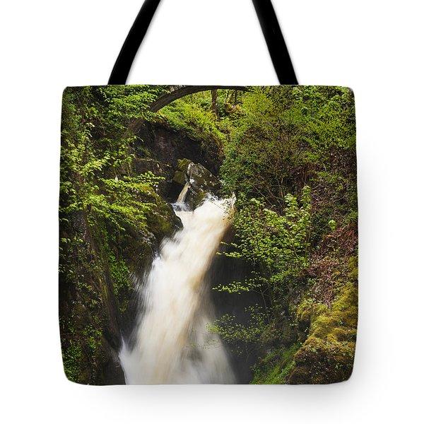 Waterfall Aira Force Tote Bag